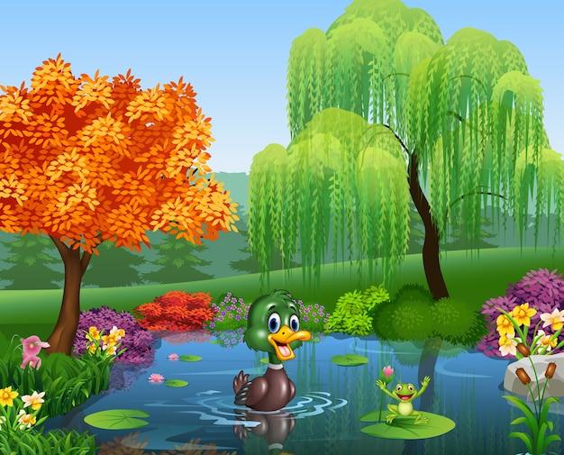Pato dos desenhos animados com sapo feliz