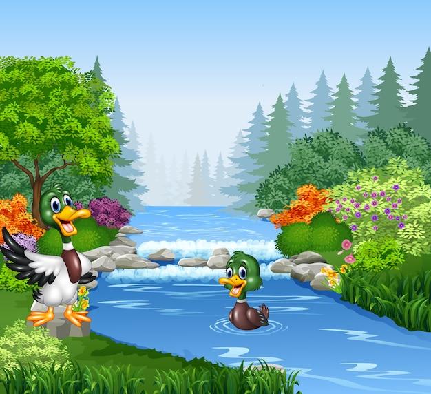 Pato dos desenhos animados no banco do rio