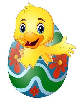 Pato pequeno bonito chocado de um ovo