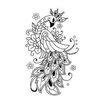 Pavão bonito desenhado à mão