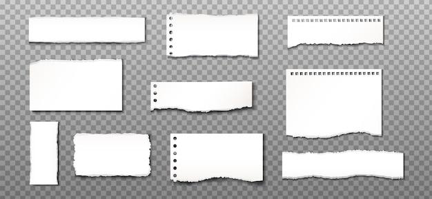 Pedaços de papel rasgado em transparente.