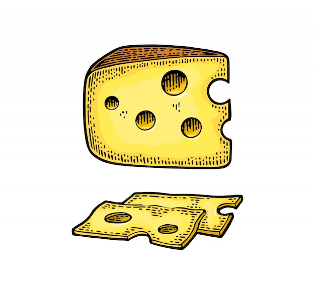 Pedaços de queijo gravura ilustração