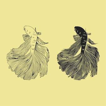 Peixe betta mão ilustrações desenhadas