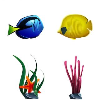 Peixe de mar e plantas isoladas no fundo branco