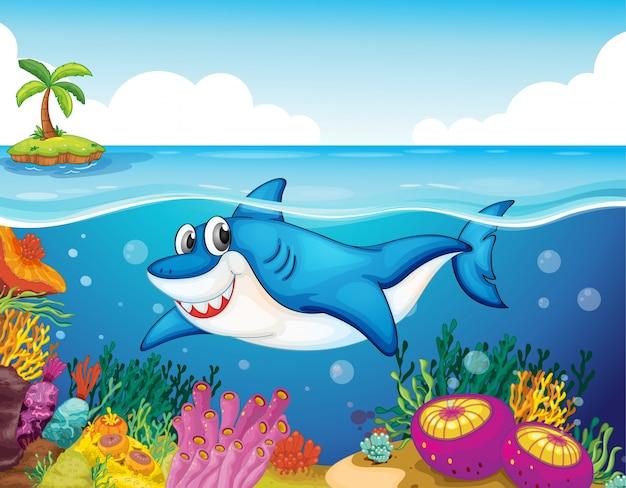 Peixe de tubarão no mar