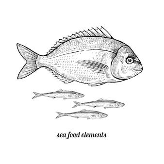 Peixe dorado e anchovas.