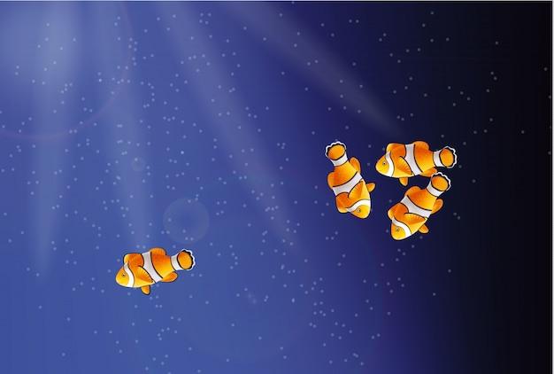 Peixe dourado debaixo d'água
