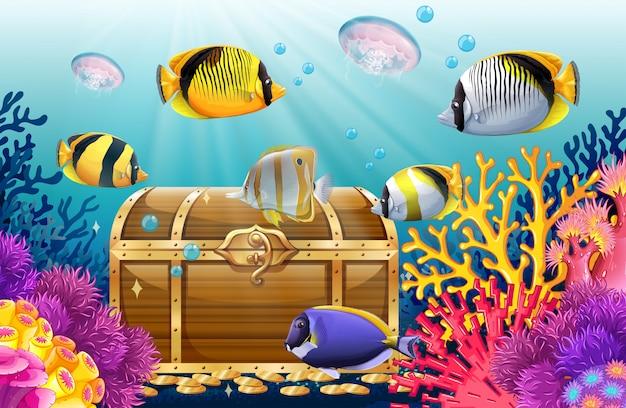 Peixe e água-viva no mar