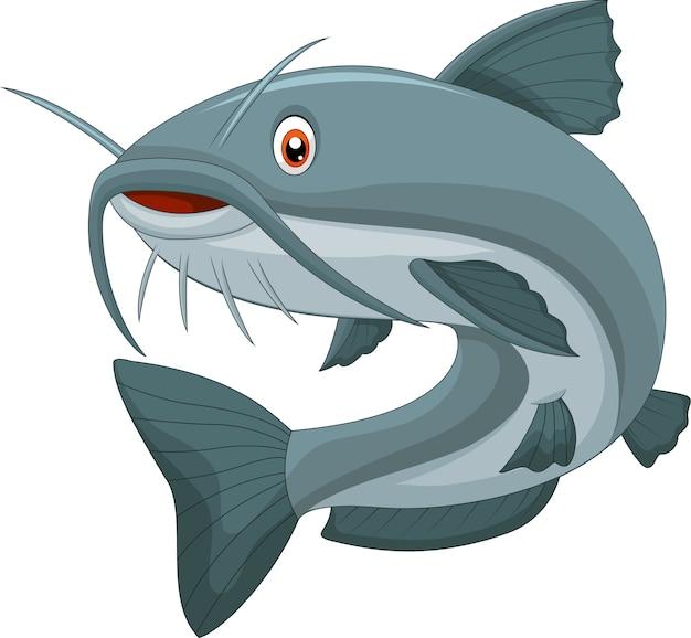 Peixe-gato dos desenhos animados