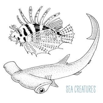 Peixe-leão vermelho de criatura do mar e grande tubarão-martelo. mão gravada desenhada no desenho antigo, estilo vintage.