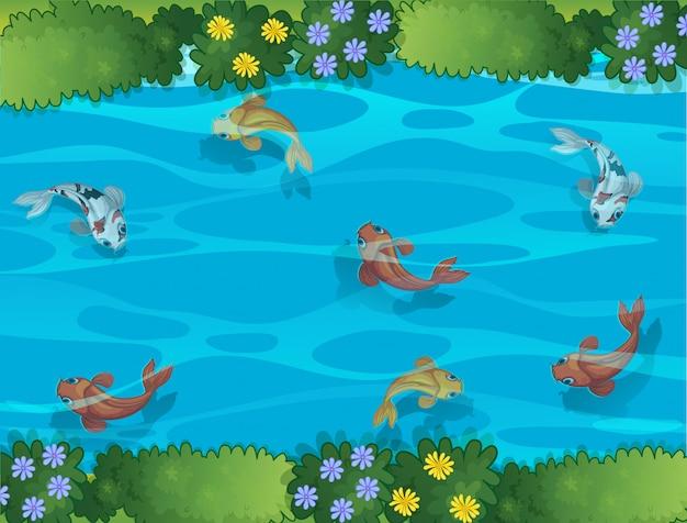 Peixe, natação, em, um, fluxo