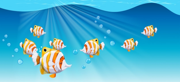 Peixe, natação, sob, oceânicos