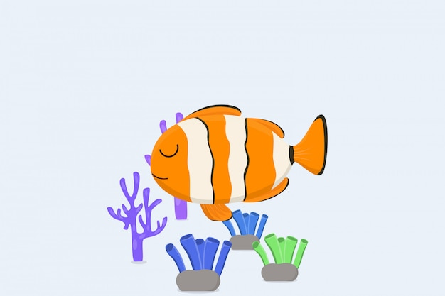 Peixe-palhaço e recifes de coral ao fundo