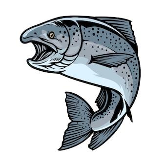 Peixe salmão chinook desenhado à mão