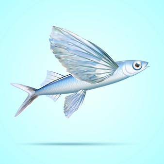 Peixe voador prateado isolado em fundo azul claro