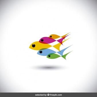 Peixes coloridos translúcidos