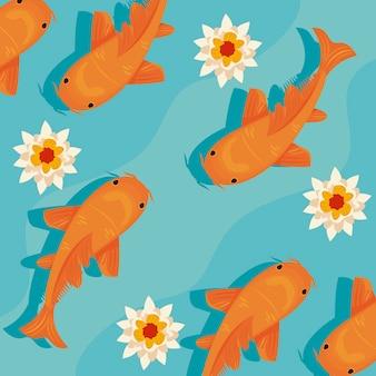 Peixes koi laranja