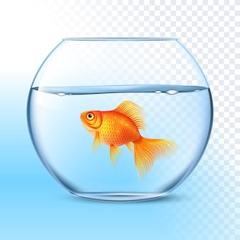 Peixinho na imagem realista de tigela de água