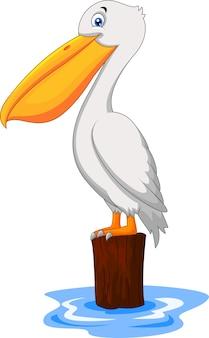 Pelicano de desenhos animados na baía