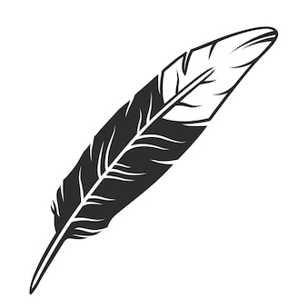 Pena de pássaro preto e branco
