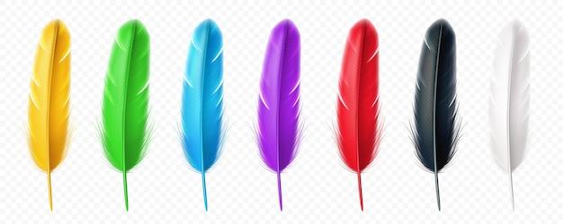 Pena realista de pássaros em preto e branco, amarelo, verde, azul, roxo, vermelho Vetor Premium