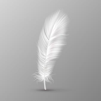 Pena realista. uma única penugem branca com asas macias de pássaro na imagem vetorial de fundo transparente