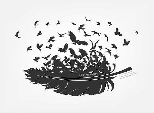 Penas com bando de pássaros voando