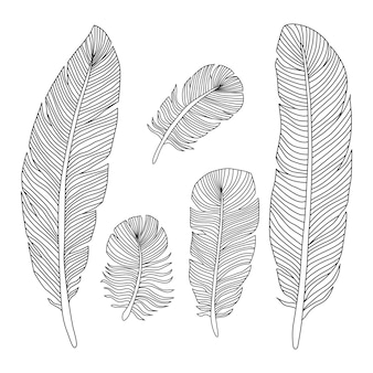 Penas de mão desenhada delinear silhuetas