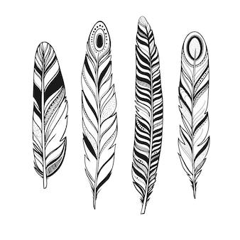 Penas decorativas de pássaros com ornamentos, ilustração vetorial, penas ornamentais em preto e branco