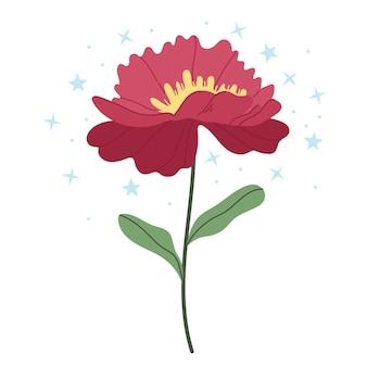 Peônia vermelha em um fundo branco. ilustração simples.