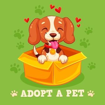 Pequeno cão sorridente pronto para adoção