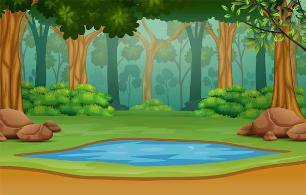 Pequeno lago no meio da floresta