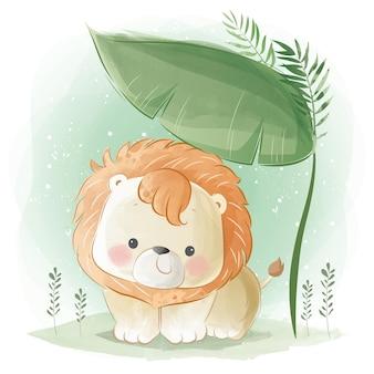 Pequeno leão safari sob uma grande folha