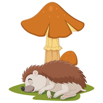 Pequeno ouriço de desenho animado dormindo sob o cogumelo