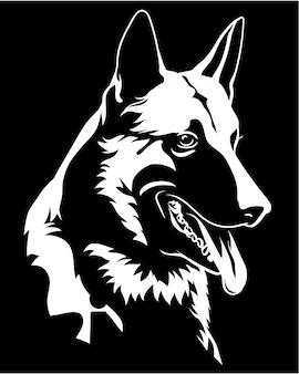 Perfil de uma cabeça de cão malinois isolado no preto