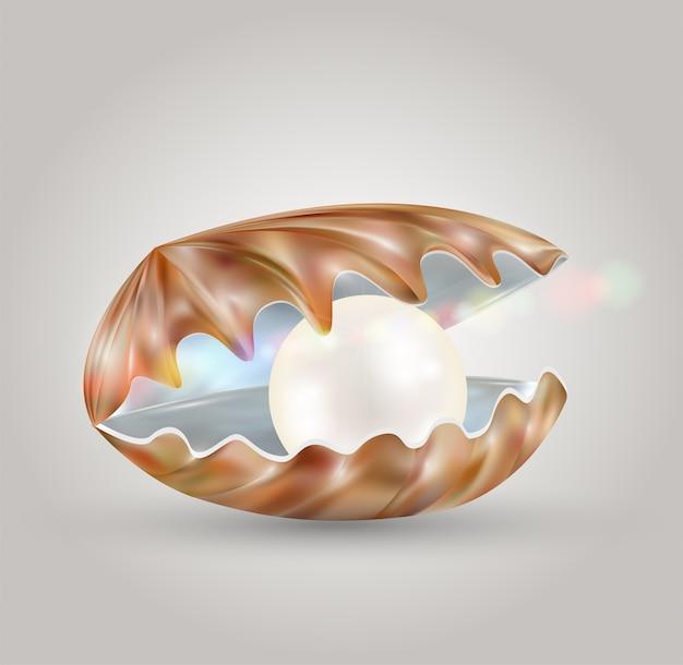 Pérola brilhante em uma concha de mar aberto