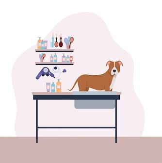 Personagem de animal de estimação bonito cachorro pitbull