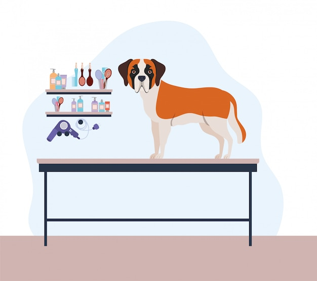 Personagem de animal de estimação bonito cão saint bernard