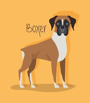 Personagem de animal de estimação cão boxer bonito