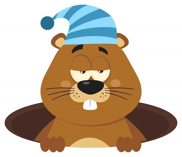 Personagem de desenho animado bonito marmota com chapéu de dormir