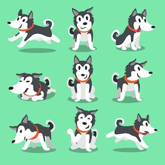 Personagem de desenho animado cão husky siberiano posa
