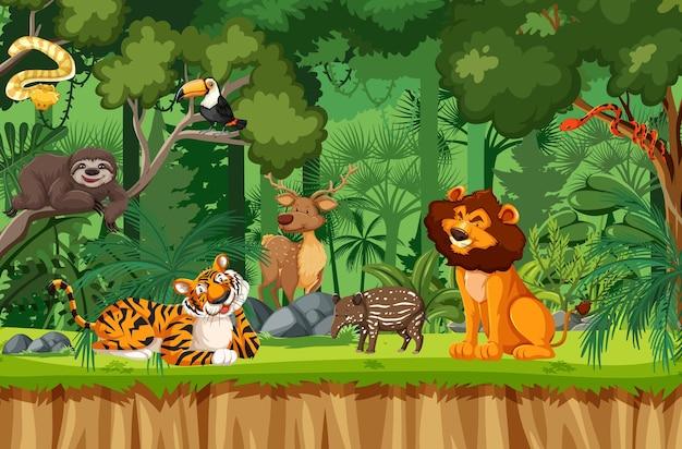 Personagem de desenho animado de animal selvagem na cena da floresta
