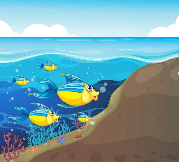 Personagem de desenho animado de muitos peixes exóticos na ilustração subaquática