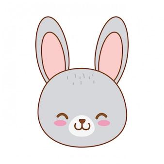 Personagem de floresta coelho bonito