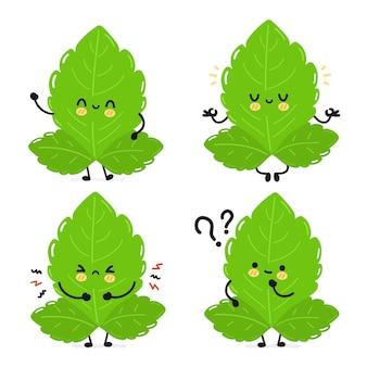 Personagem de folhas de estévia fofa e engraçada