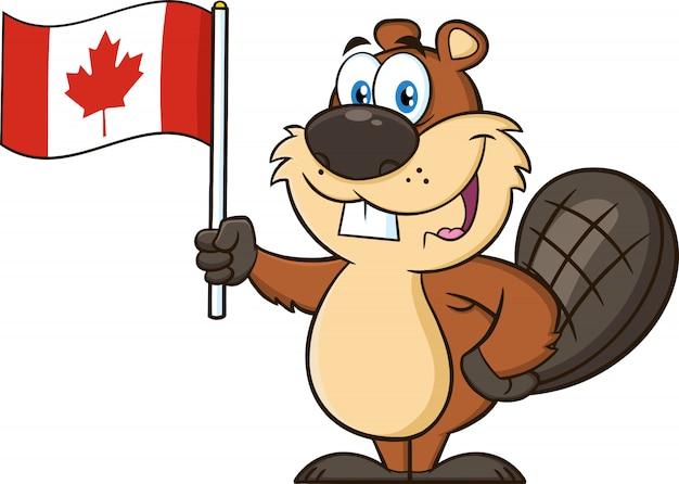 Personagem de mascote bonito dos desenhos animados castor segurando uma bandeira do canadá. ilustração