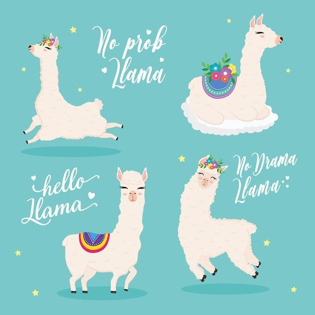 Personagens de animais exóticos de alpacas de farinha fofa com flores e letras de desenho