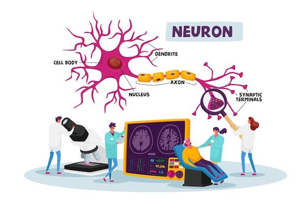 Personagens de cientistas vestindo túnica médica branca aprendendo cérebro humano em laboratório com esquema de dendrito, corpo celular, axônio e núcleo com terminais sinápticos