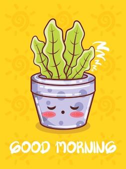 Personagens de desenhos animados de vaso de planta suculenta fofa e ilustrações. conceito de bom dia.