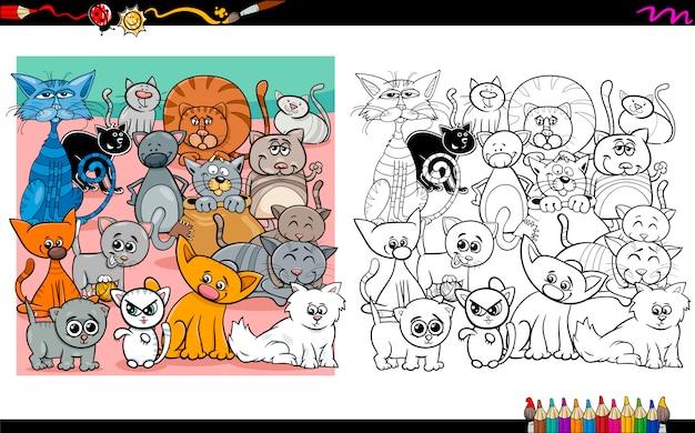 Personagens de gato que coloriram a página